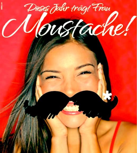 Moustache_Beitrag_Schnauzer_01